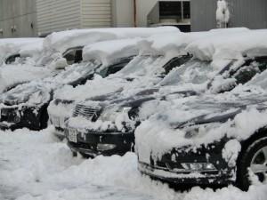 朝起きると周りは雪に埋まっていました。雪かきから一日が始まります。