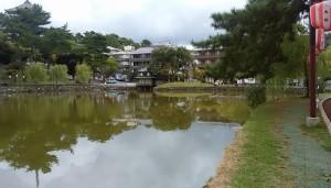 興福寺、三重の塔を見ながら猿沢の池をめぐって